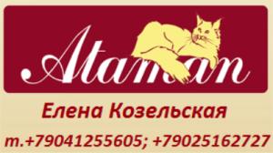 в.Атаман